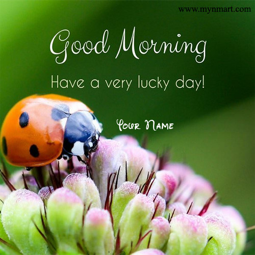 Good Morning Have a Very Lucky Day