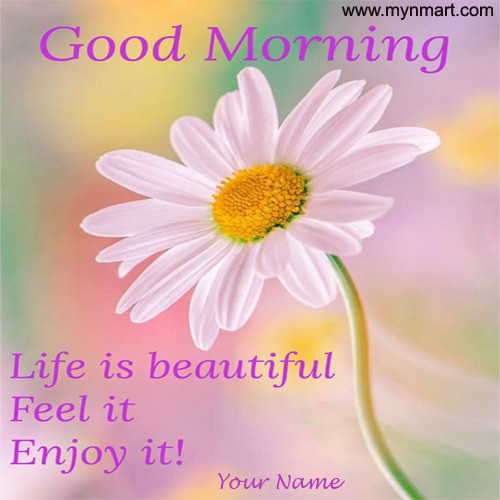 Good Morning Life is Beautiful