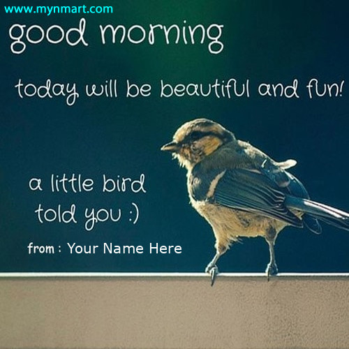 Good Morning Quotes Message with Bird