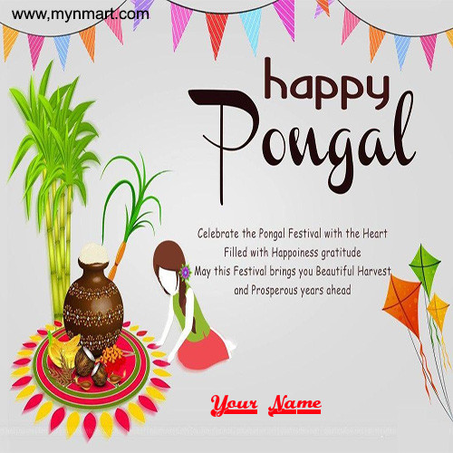 Happy Pongal Greeting