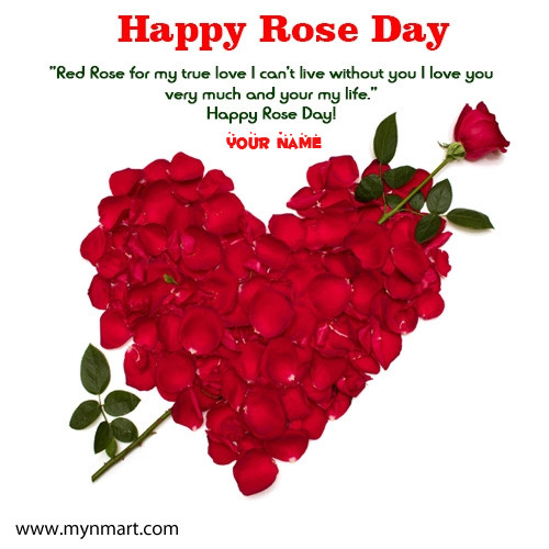 Happy Rose Day Greeting with Your Name and Roses
