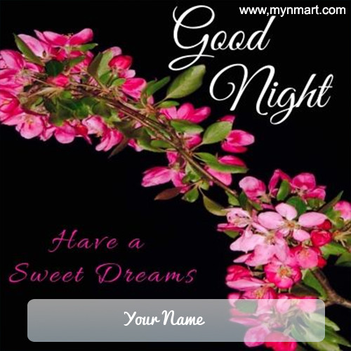 Have a Sweet Dreams