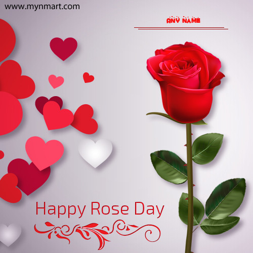 Rose Day 2019 Greeting with your name